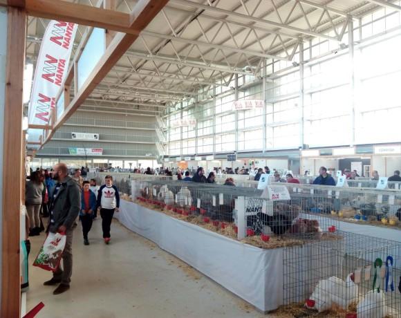 Exposiciones y Ferias